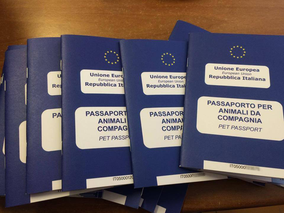 Passports prepared and ready